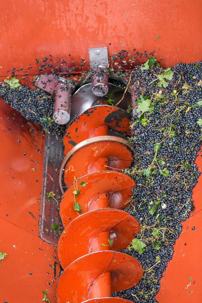 Caveau les Vignerons de Sérignan